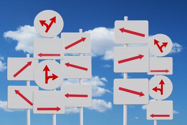 あなたはディズニーランドに行くとしたらどの方法で行きますか?